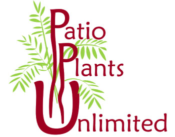 Patio Plants Unlimited