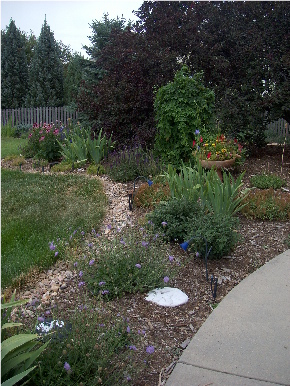Fort Collins DIY Garden
