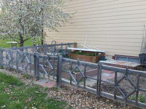 veggie garden space