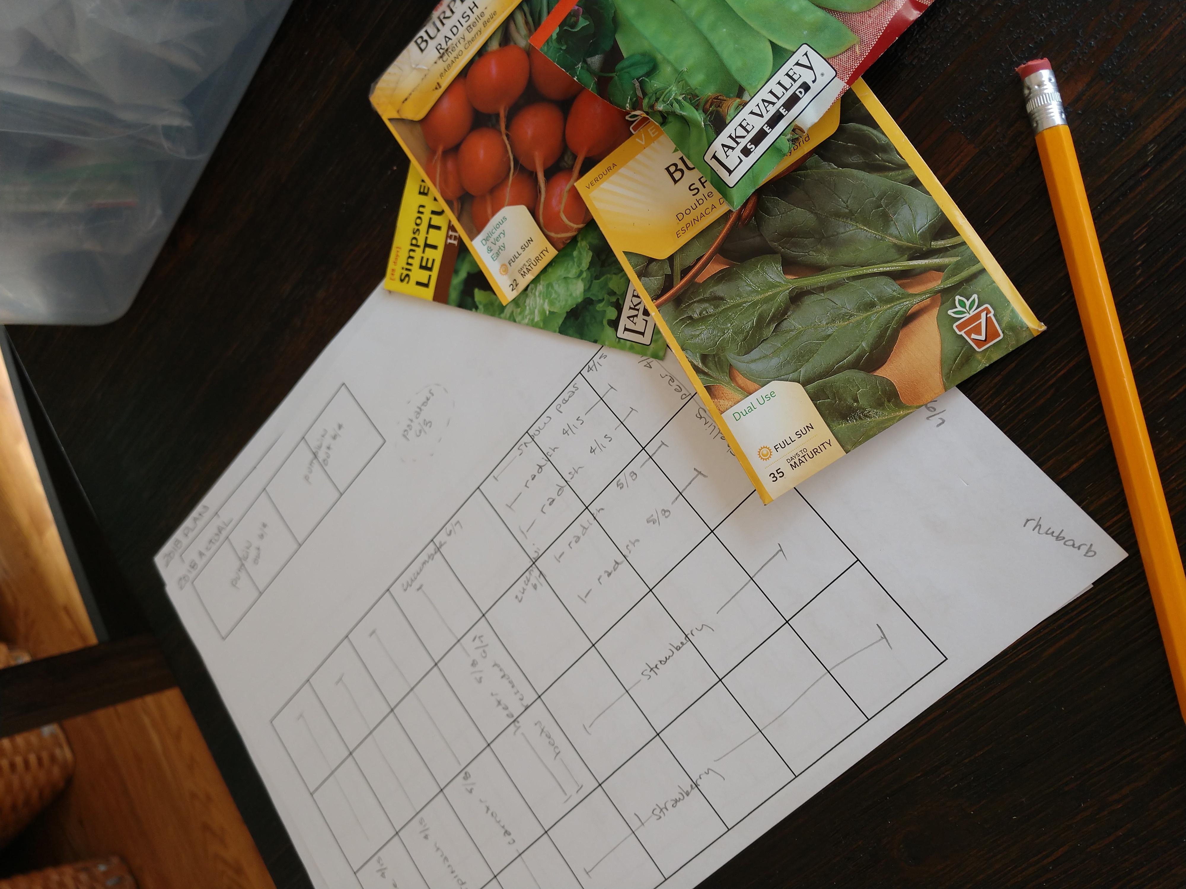 Planning My Vegetable Garden