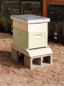 Lathrop Hive
